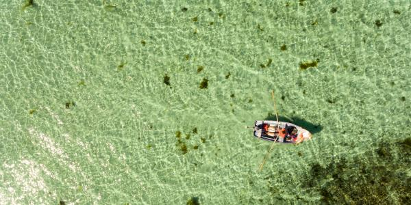 Rowing in crystal clear waters Birdview